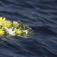 da deputatipd.it Immigrazione Il 3 ottobre è la giornata di ricordo per le vittime È stata approvata dall'Aula, in prima lettura, la nostra proposta di legge che istituisce la Giornata nazionale in memoria delle vittime dell'immigrazione che cadrà il 3 ottobre, giorno in cui nel 2013 al largo di Lampedusa morirono 366 migranti. Una tragedia che suscitò nel Paese grande emozione e unanimi sentimenti di dolore. Dichirarazione di voto e comunicato di Paolo Beni I TEMI DELLA SETTIMANA Sport Favorire l'integrazione degli atleti immigrati Permettere ai minori che non hanno la cittadinanza italiana ma vivono regolarmente nel nostro Paese almeno dall'età di 10 annidi poter essere tesserati presso società sportive con le stesse procedure previste per i cittadini italiani:lo prevede una proposta di legge approvata a larga maggioranza dall'Aula. Il provvedimento passa al Senato. Dichiarazione di voto di Mara Carocci Giustizia Informativa del ministro Orlando sulla strage al Tribunale di Milano Il ministro della Giustizia, Andrea Orlando, ha tenuto un'informativa sulla strage al Tribunale di Milano. Abbiamo insistito su tre punti importanti: garantire la sicurezza nei luoghi in cui si […]