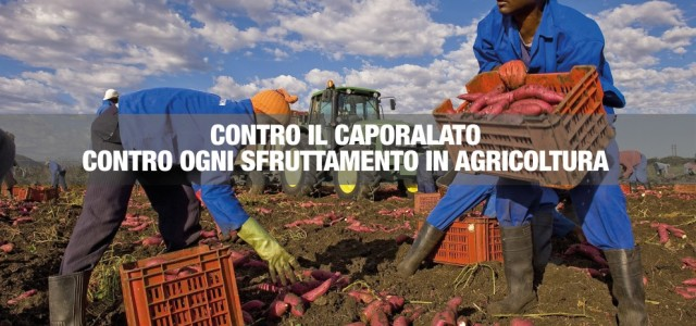 da deputatipd.it LEGGI IL DOSSIER Oggi abbiamo approvato uno dei provvedimenti più importanti e attesi: la legge contro il caporalato. Con questa legge vogliamo fermare una delle piaghe più gravi che affliggono la nostra agricoltura. Il fenomeno dell'intermediazione illegale e dello sfruttamento lavorativo in agricoltura –secondo stime sindacali e delle associazioni di volontariato–coinvolge circa 400.000 lavoratori in Italia, sia italiani che stranieri, ed è diffuso in tutte le aree del Paese e in settori dell'agricoltura molto diversi dal punto di vista della redditività, dal pomodoro ai prodotti della viticoltura. Intermediazione illecita e sfruttamento del lavoro La norma incide con significative modifiche al quadro normativo penale attuale, sostituendo l'articolo 603 bis con un nuovo articolo cheriscrive la condotta illecita del caporale, indicando per lafattispecie basedel reato (chi recluta manodopera allo scopo di destinarla al lavoro presso terzi in condizioni di sfruttamento, approfittando dello stato di bisogno, eil datore di lavoroche utilizza, assume o impiega manodopera reclutata anche – ma non necessariamente – con l'utilizzo di caporalato, sfruttando i lavoratori e approfittando del loro stato di bisogno)la pena dellareclusione da uno a […]